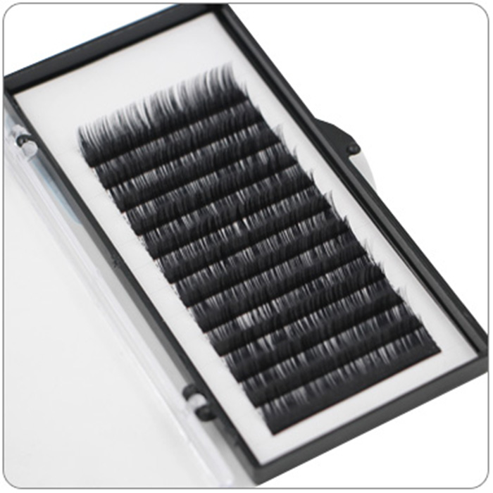 Deeply Black Eyelash Extension