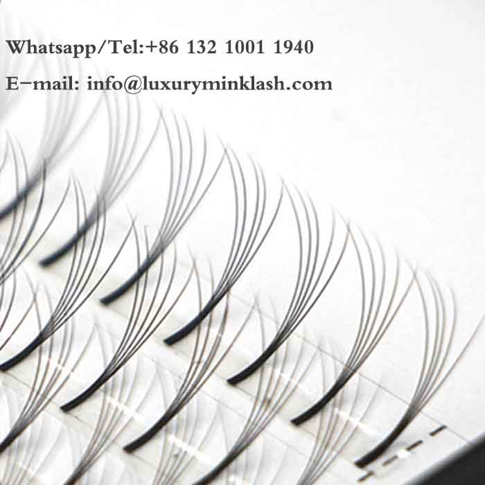 High Quality 5D Eyelash Extension With Customer Logo