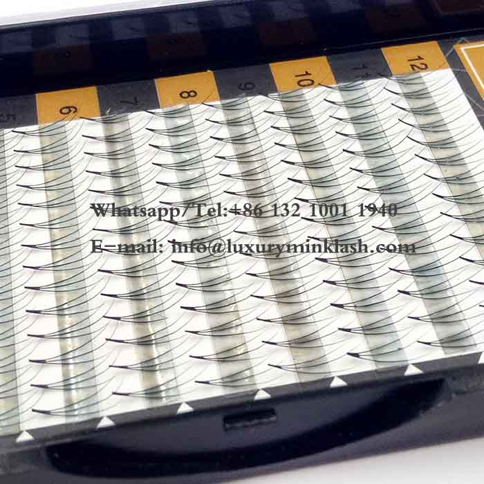 3D Pre-Fanned Volume Eyelash Extensions