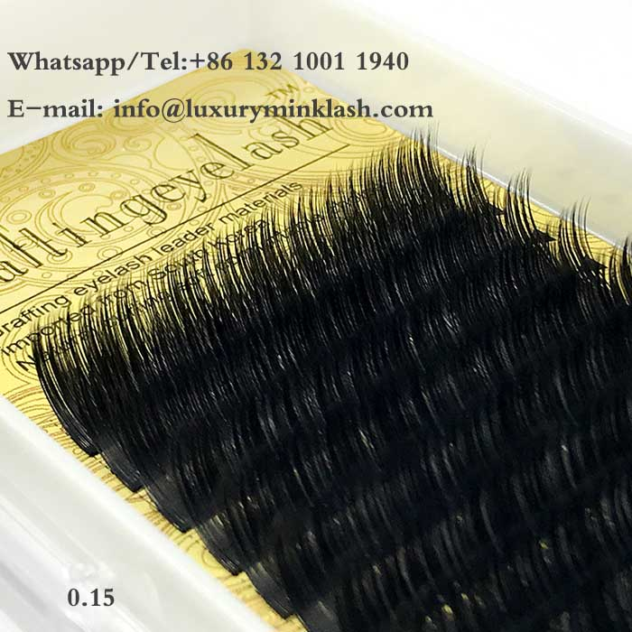 Ellipse Faux Mink Lashes Extensions